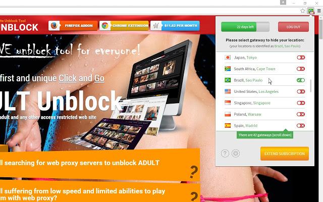 Adult Unblock VPN chrome extension