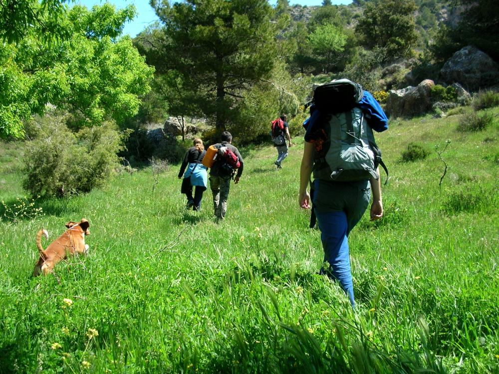 2009 · Jórvila, disfrutando de la hierba alta