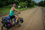 After a particularly busy section from Peñas Blancas border crossing, we were relieved to reach La Cruz where we descended to the Bahia de Salinas for treecovered dirt roads...