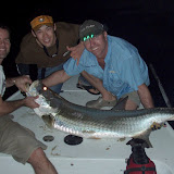 80# Tarpon on 12# print.jpg