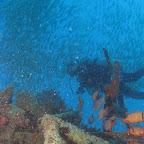 Dive at Kapalai