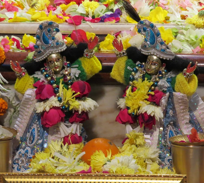 ISKCON Vallabh vidhyanagar Deity Darshan 18 jan 2017 (7)