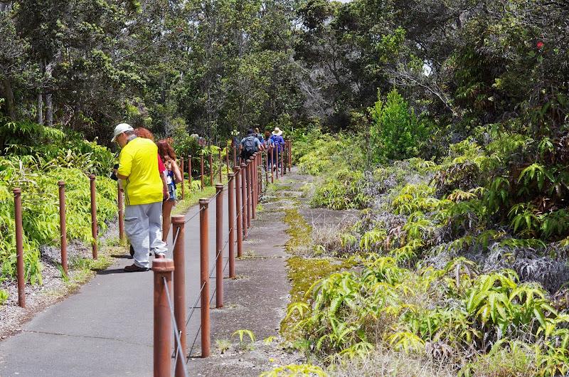 06-20-13 Hawaii Volcanoes National Park - IMGP7804.JPG