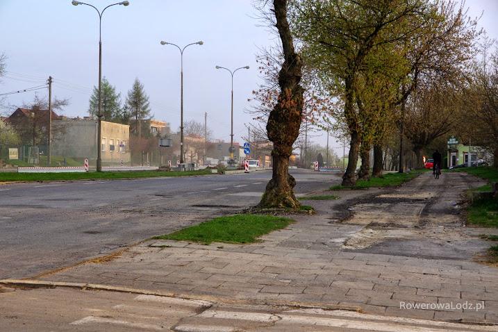 Niesamowite stare drzewa przetrwaja kolejna metamorfozę tej ulicy