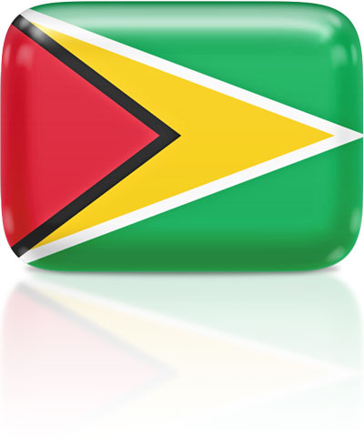 Guyanese flag clipart rectangular