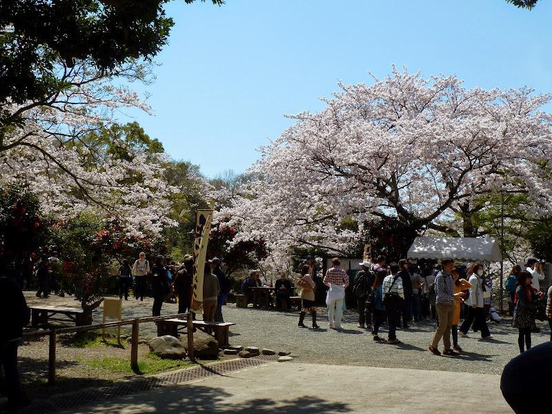 2014 Japan - Dag 7 - mike-P1050649-0185.JPG