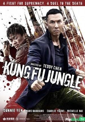 Phim Kế hoạch bí ẩn (Sát quyền) - Kung Fu Jungle (2014)