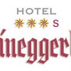 Logo Steineggerhof xxxS.jpg