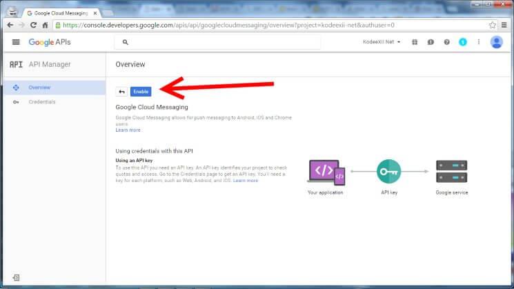 Web Push Notification Google Dev Console GCM Enable Button