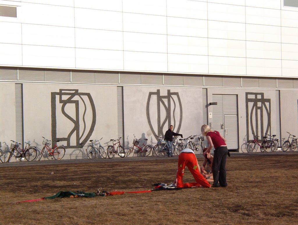 Wappu 2008 - IM002701.JPG