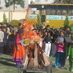 Lohari Celebration (13 Jan 2017)