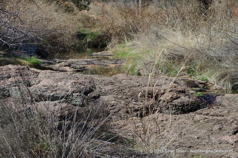 02-23-13 Kerrville & Enchanted Rock - IMGP4989.JPG