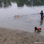 Ich trinke mal was, und Finja hängt an der kurzen Leine, damit sie nicht gleich zum anderen Ufer schwimmt.