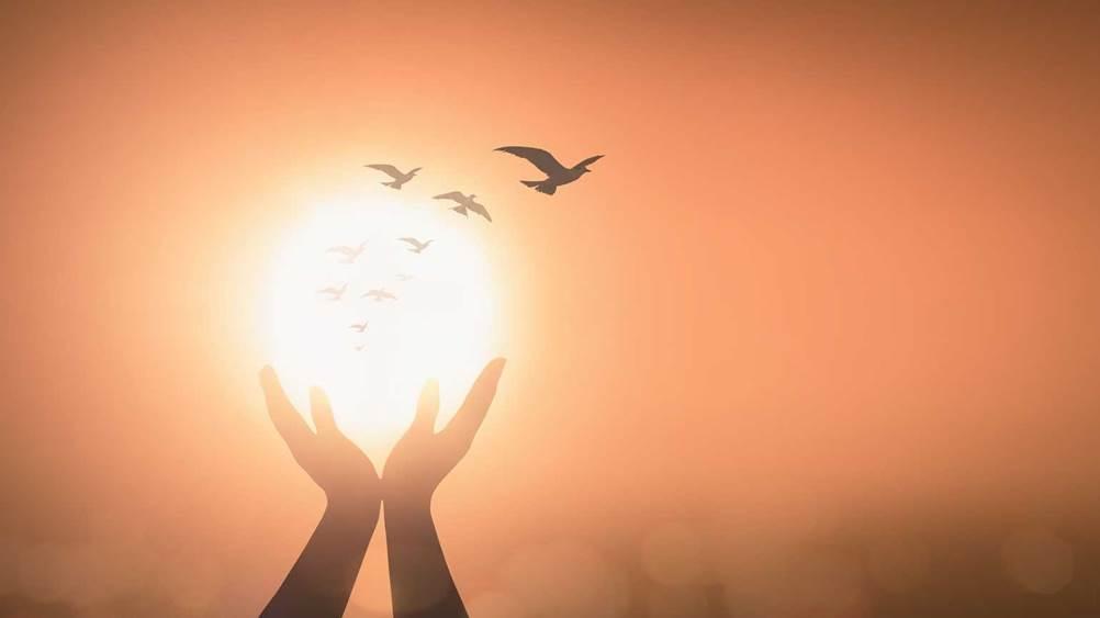 Khi thức dậy, chúng ta xin gì với Chúa