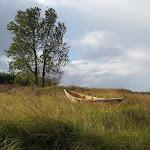 dryboat.jpg