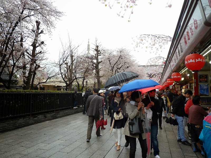 2014 Japan - Dag 5 - mike-P1050595-0131.JPG