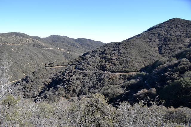trail into Spunky Canyon