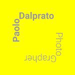 Paolo Dalprato Photographer