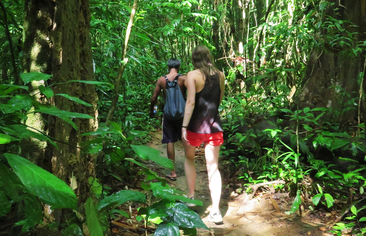 2-Day Khao Sok Jungle Safari from Krabi