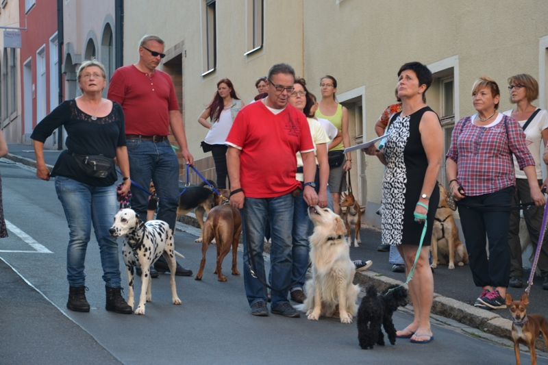 On Tour in Tirschenreuth: 30. Juni 2015 - DSC_0074.JPG