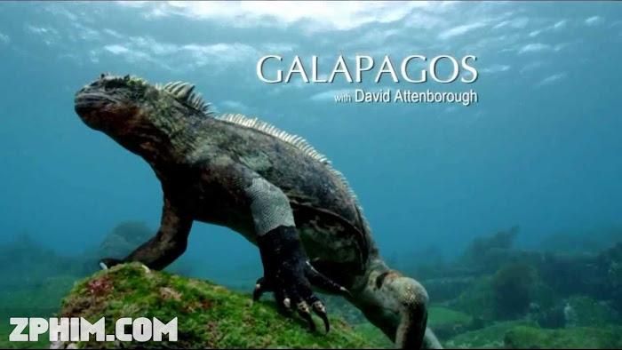 Ảnh trong phim Quần Đảo Galapagos - Galápagos 1
