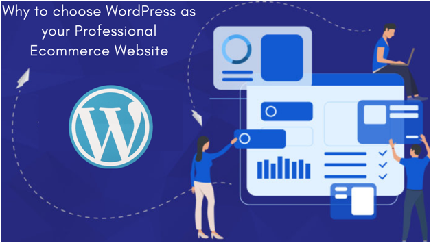 Why to choose WordPress as your Professional Ecommerce Website