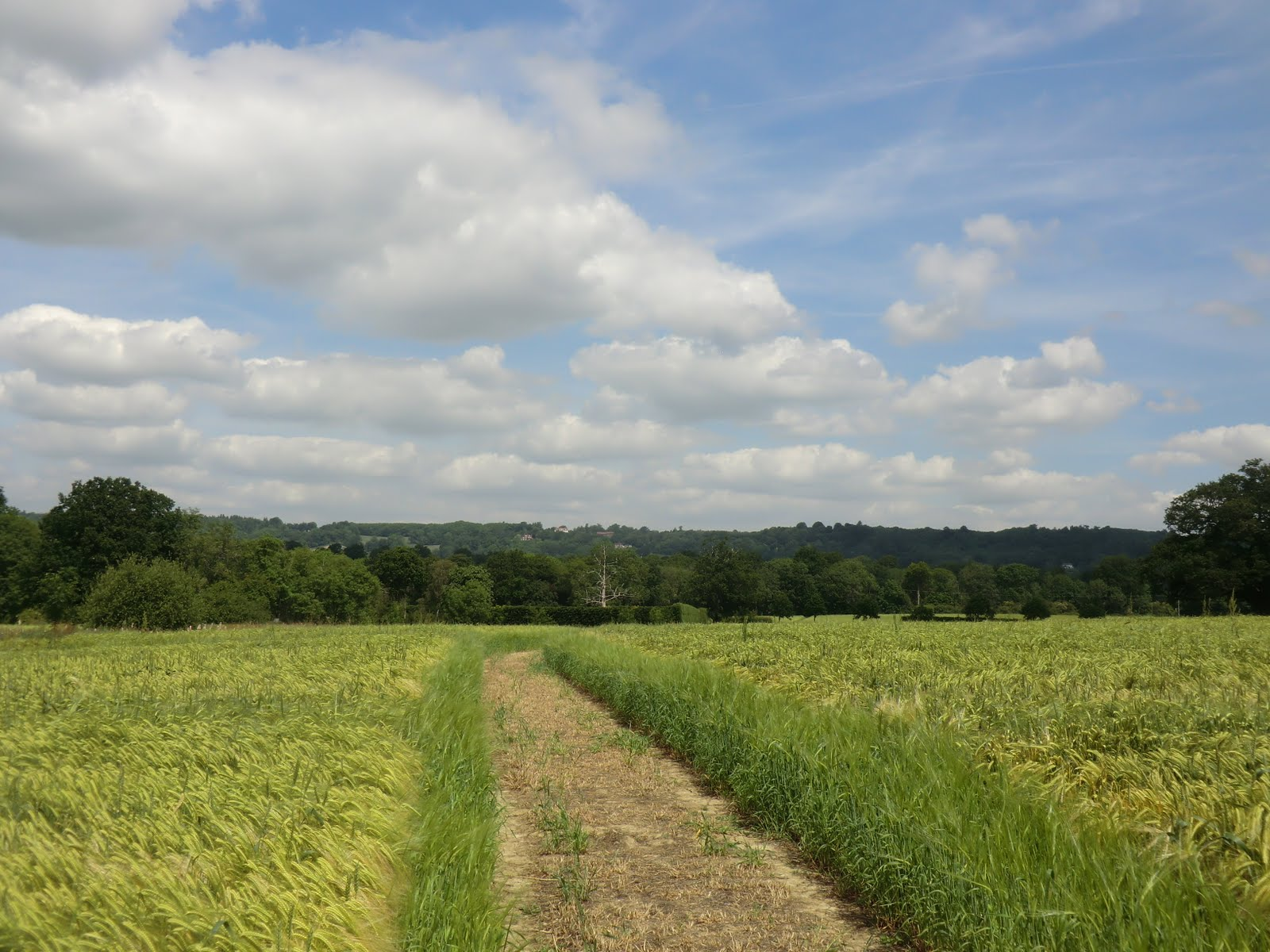 CIMG1995 Towards Great Hollanden Farm