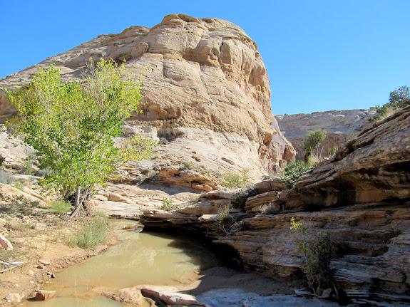 Nate's Canyon