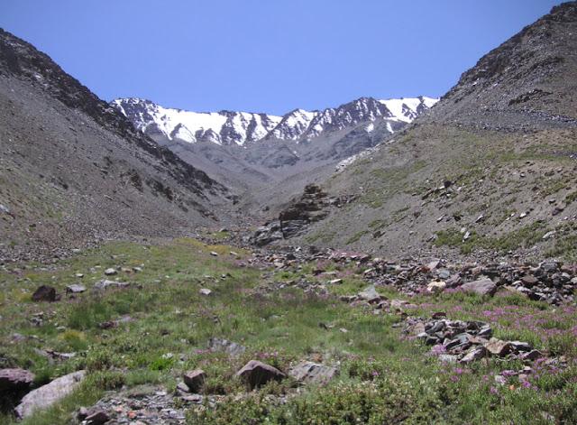 Vallée de la Sasyk, 4100 m (Muzkol Range). 27 juillet 2007. Photo Jean Michel