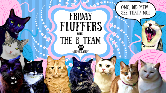Friday Fluffers with The B Team ©BionicBasil®