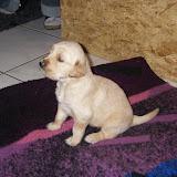 Erster Besuch bei Finia (3,5 Wochen alt)