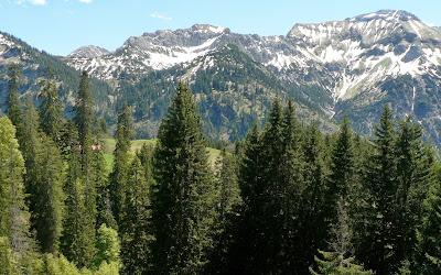 Blick zur Alm nahe der Schwarzenberghütte Hindelang Allgäu