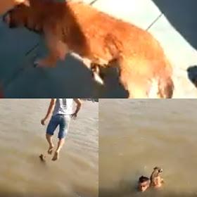 Itaituba/PA: Homem pula no Rio Tapajós para salvar cachorro que tentava atravessar