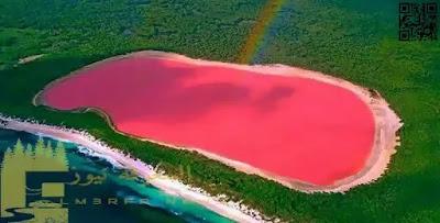 ماذا تعرف عن بحيرة هيلير الوردية ؟