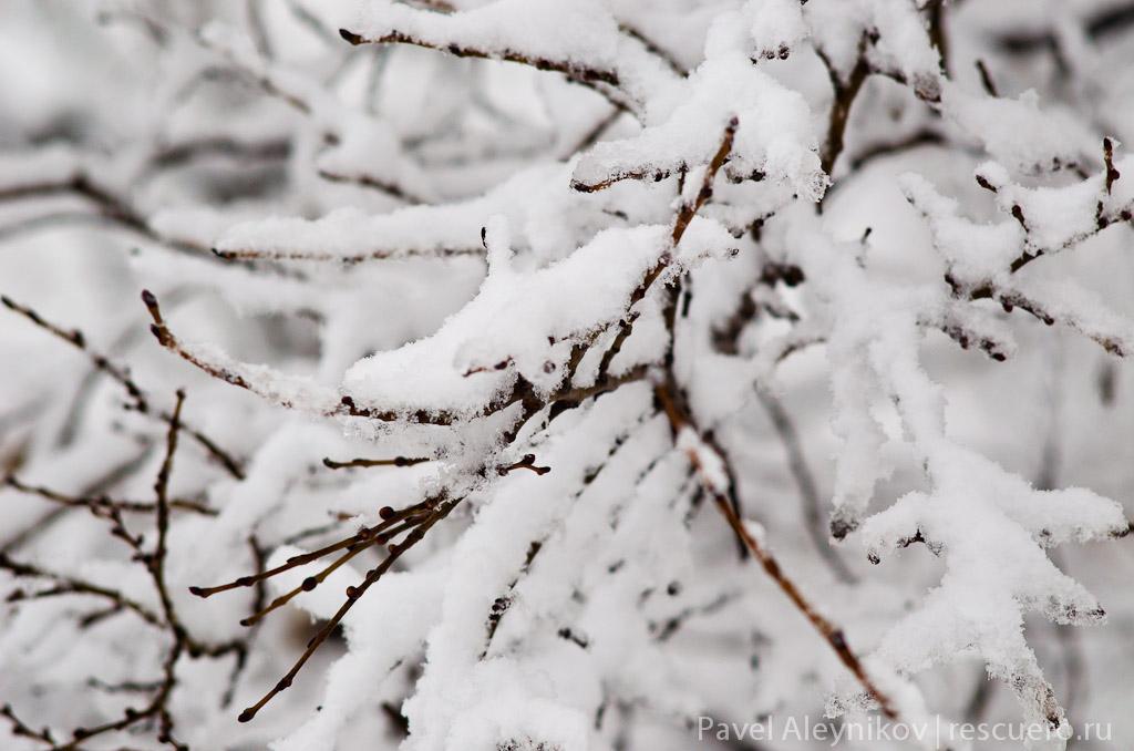 Зима в Торезе