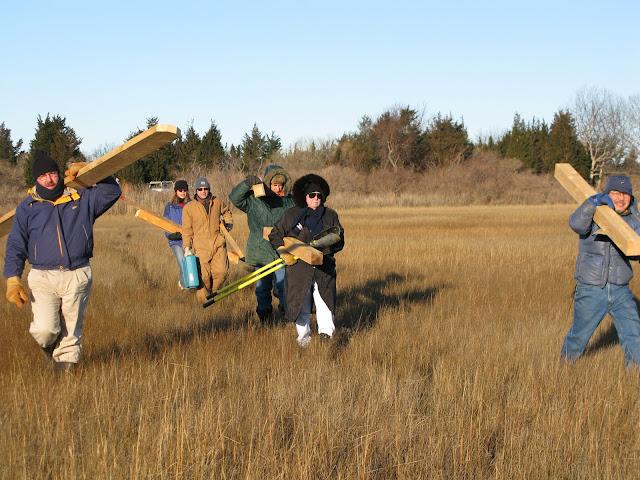 Osprey Platform - Jan 15, 2012 - IMG_8559.JPG