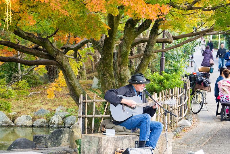 京都 紅葉 円山公園 写真2
