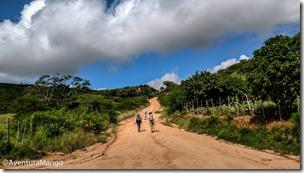 Trilha no Parque Estadual de Pedra da Boca (4)