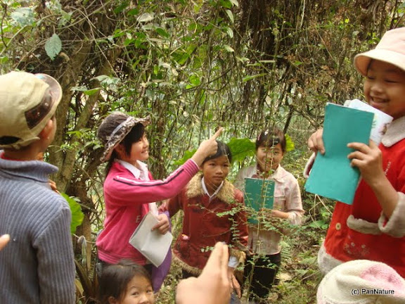 Learning about biodiversity in the forest.