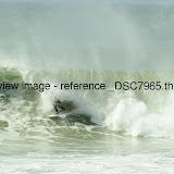 _DSC7965.thumb.jpg
