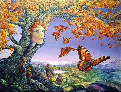 ButterflyTree.jpg