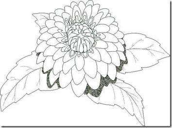 22 - flores y primaveras (36)