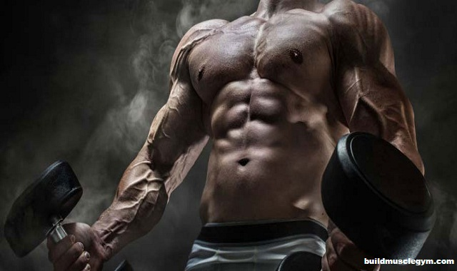 Steps Towards Gaining More Muscle