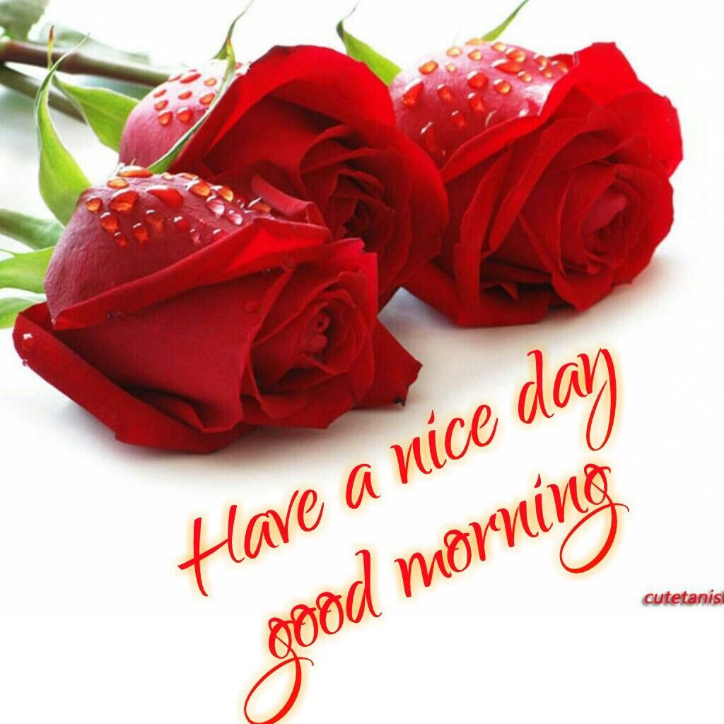 Ace Keralam Have A Nice Day Good Morning