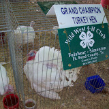 Fort Bend County Fair - 101_5590.JPG