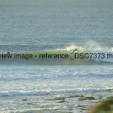 _DSC7373.thumb.jpg