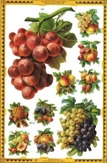 victoriangrapsandfruit.jpg