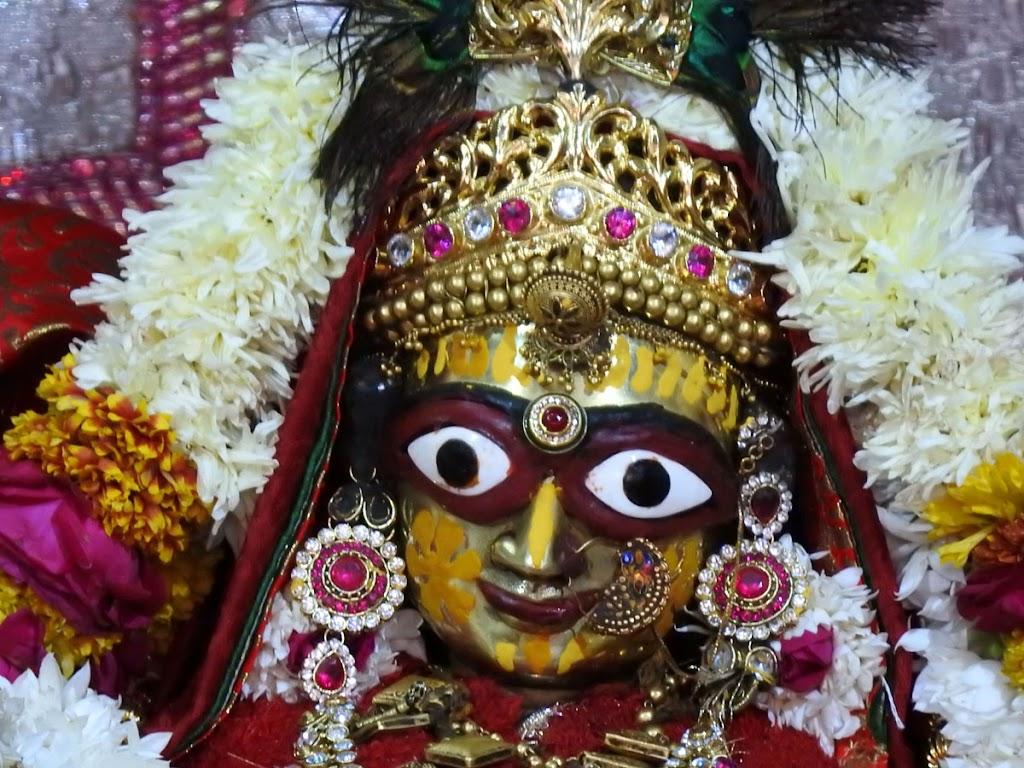 Radha Govind Devji Deity Darshan 04 Jan 2017 (5)