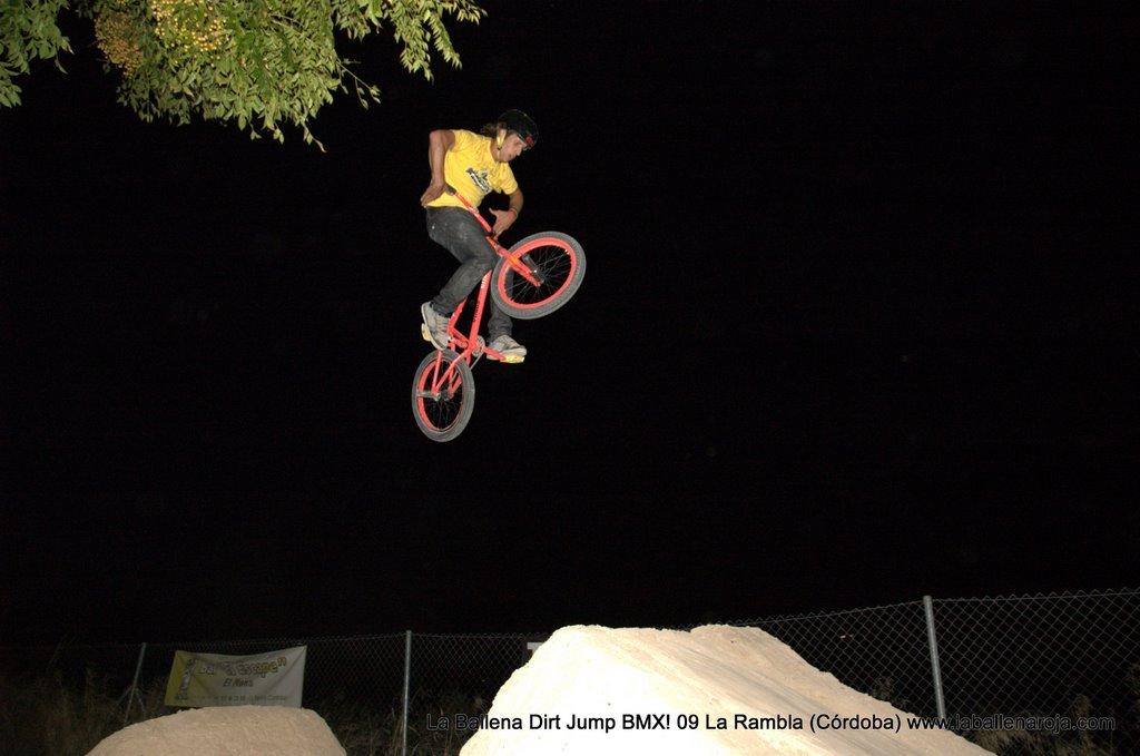 Ballena Dirt Jump BMX 2009 - BMX_09_0173.jpg