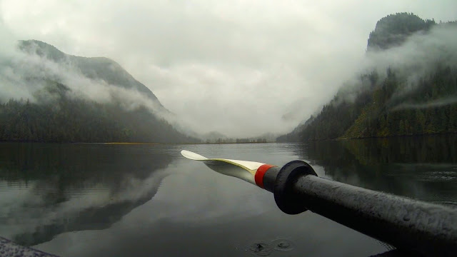 Searching for salmon in the Great Bear Rainforest. Photographer Courtney Quirin